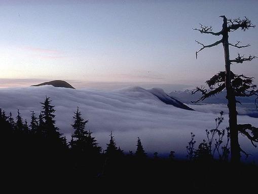 Acid precipitation in southeast Alaska